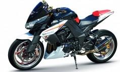 Kawasaki Z1000 OPTION SPORT RACING