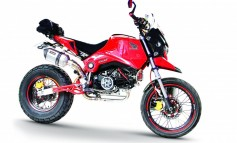 MSX 125 Cross Touring