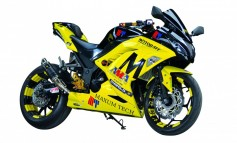 Kawasaki  Ninja 300 Sting of Speed By Link Thailand