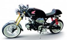 HONDA MSX 125 CAFÉ Racer
