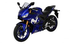 2019 NEW YZF-R3