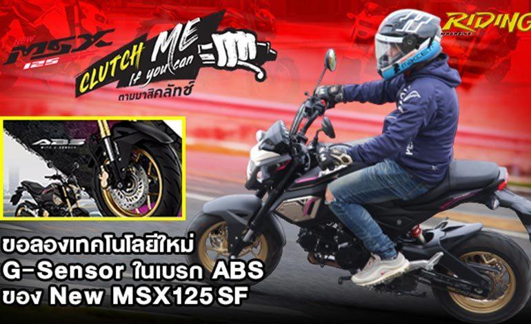 Review New Honda MSX125SF